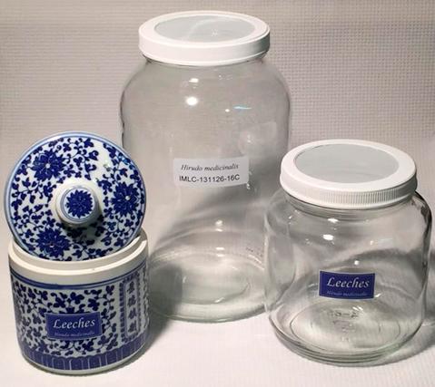 Leech jars